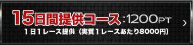 ボートアート・オンライン_15日間